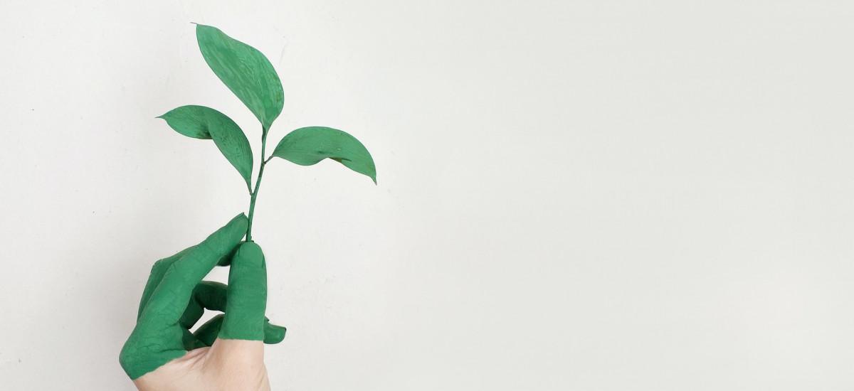 integratori sostenibili