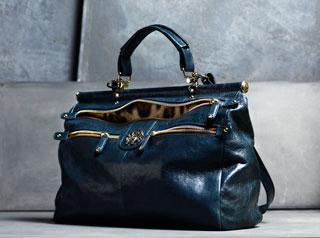 Diva Bag by Roberto Cavalli