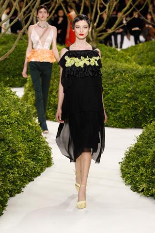 dior haute couture spring-summer 2013