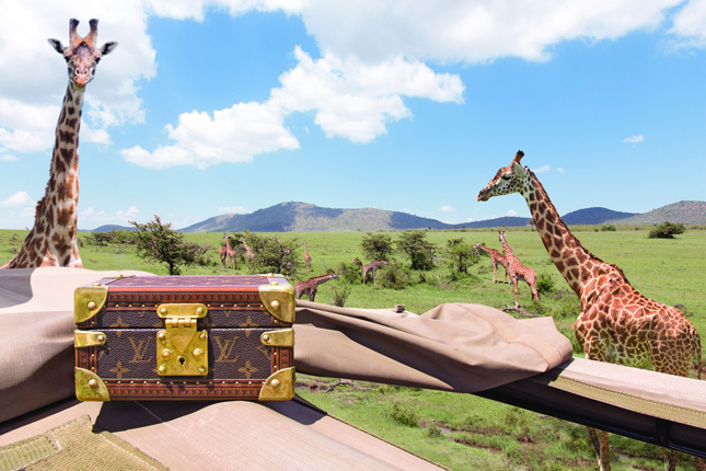 Cartoline di Viaggio by Micol Sabbadini - Kenya, Maasai Mara National Park