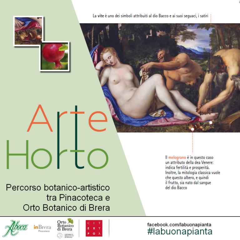 arteorto2