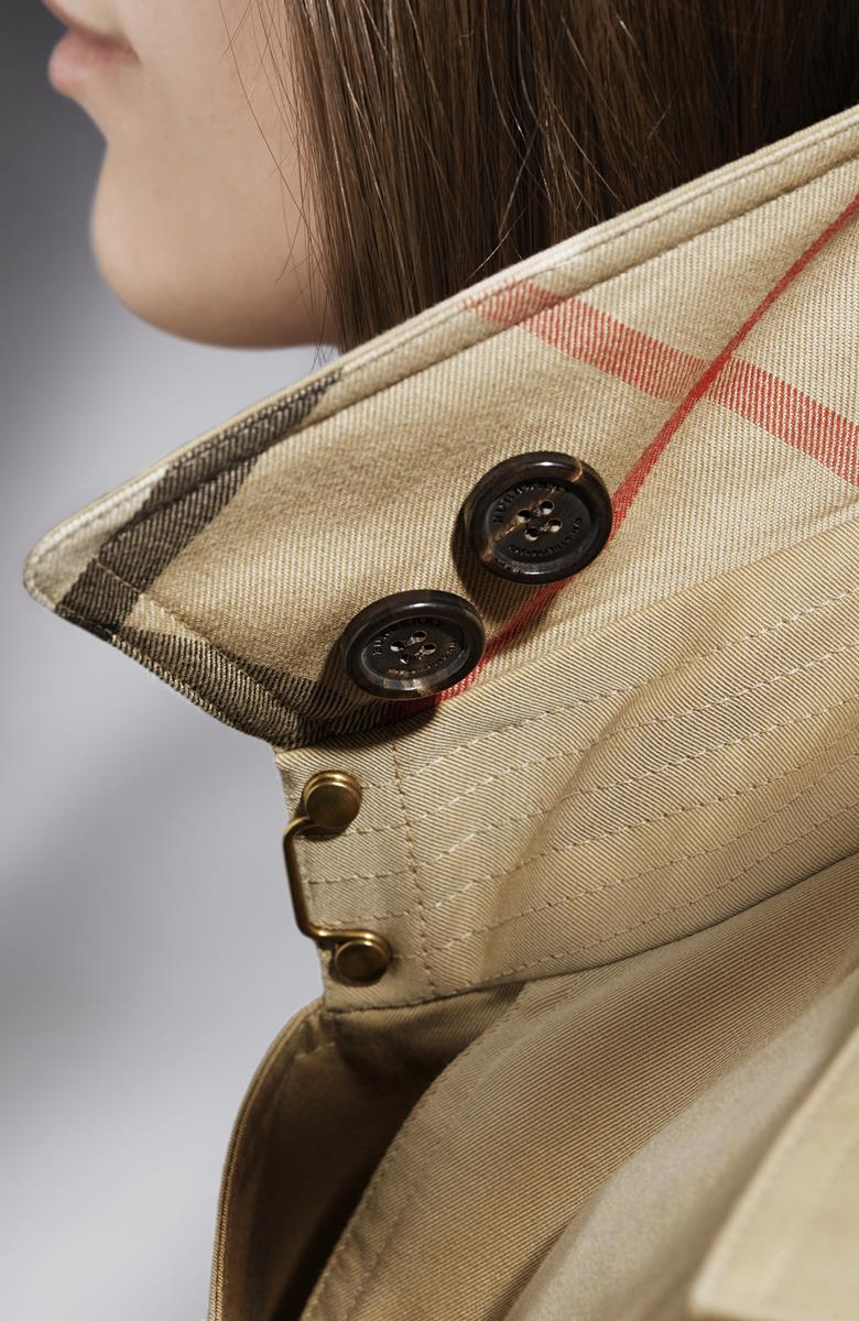 The Burberry Trench Coat - Detail Images_011 (Copy)