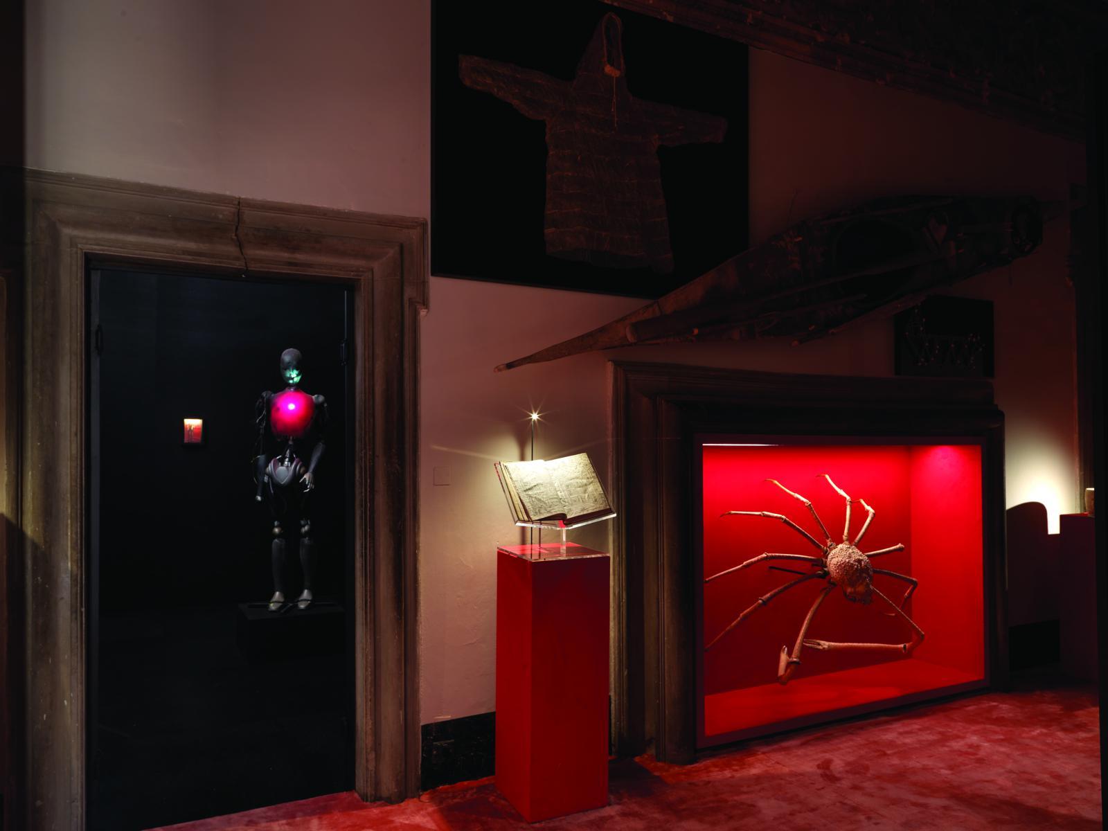 Wunderkammer Arezzo, foto di Massimo Listri