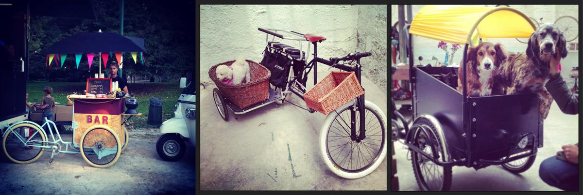 La cargo bike è perfetta per il trasporto urbano: dagli usi commerciali al trasporto di tutti gli affetti più cari...