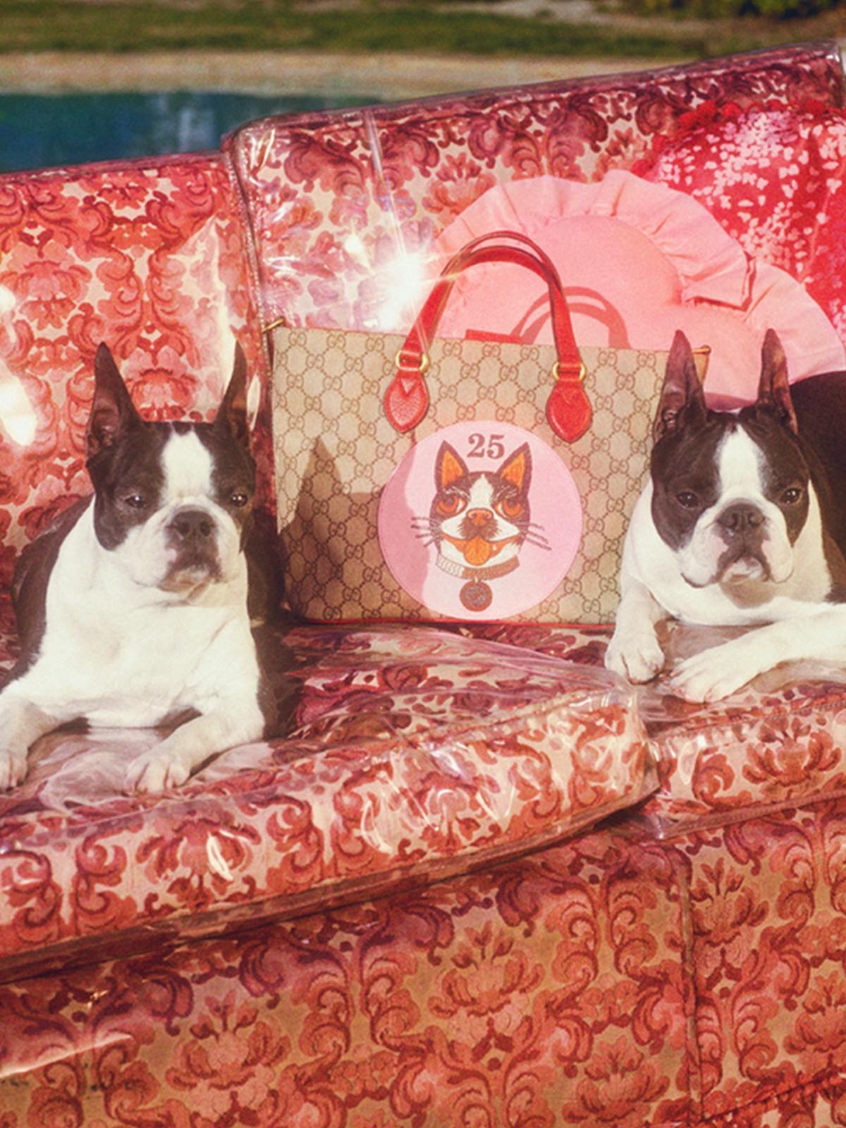 Gucci presenta una collezione speciale dedicata all'Anno del Cane per il Capodanno Cinese 2018
