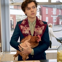 Harry Styles Gucci Tailoring