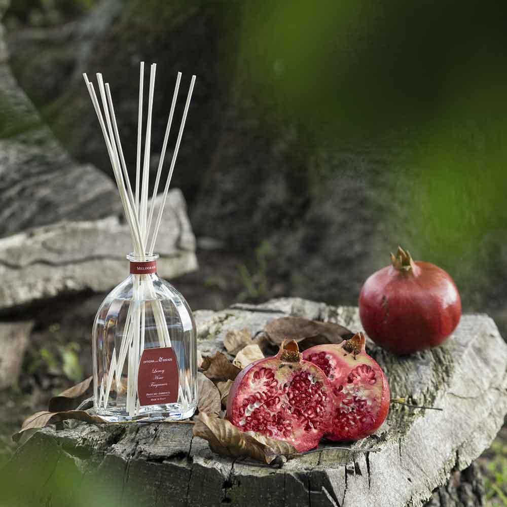 migliorare-qualita-vita-aromacologia