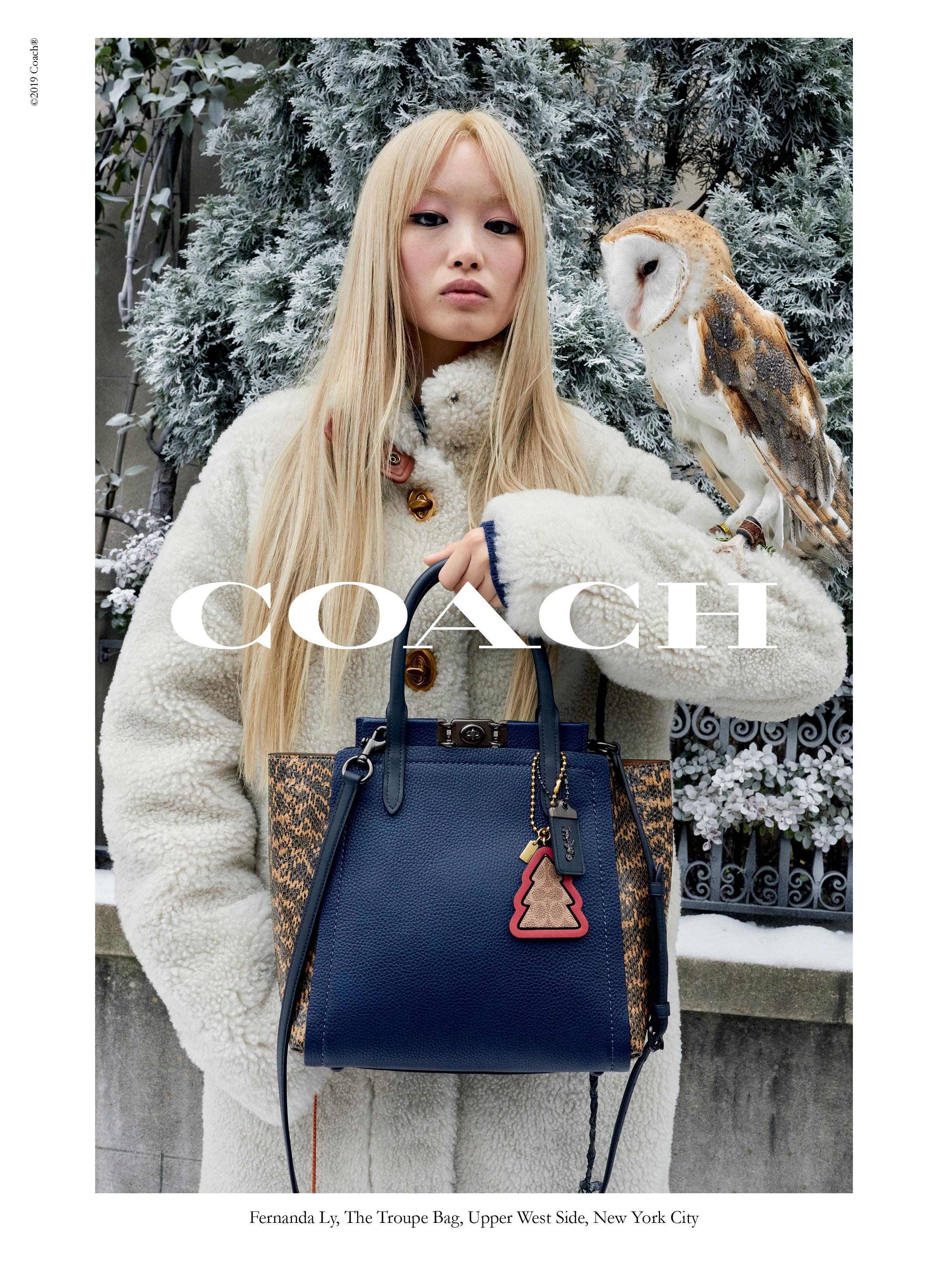 coach campagna holiday