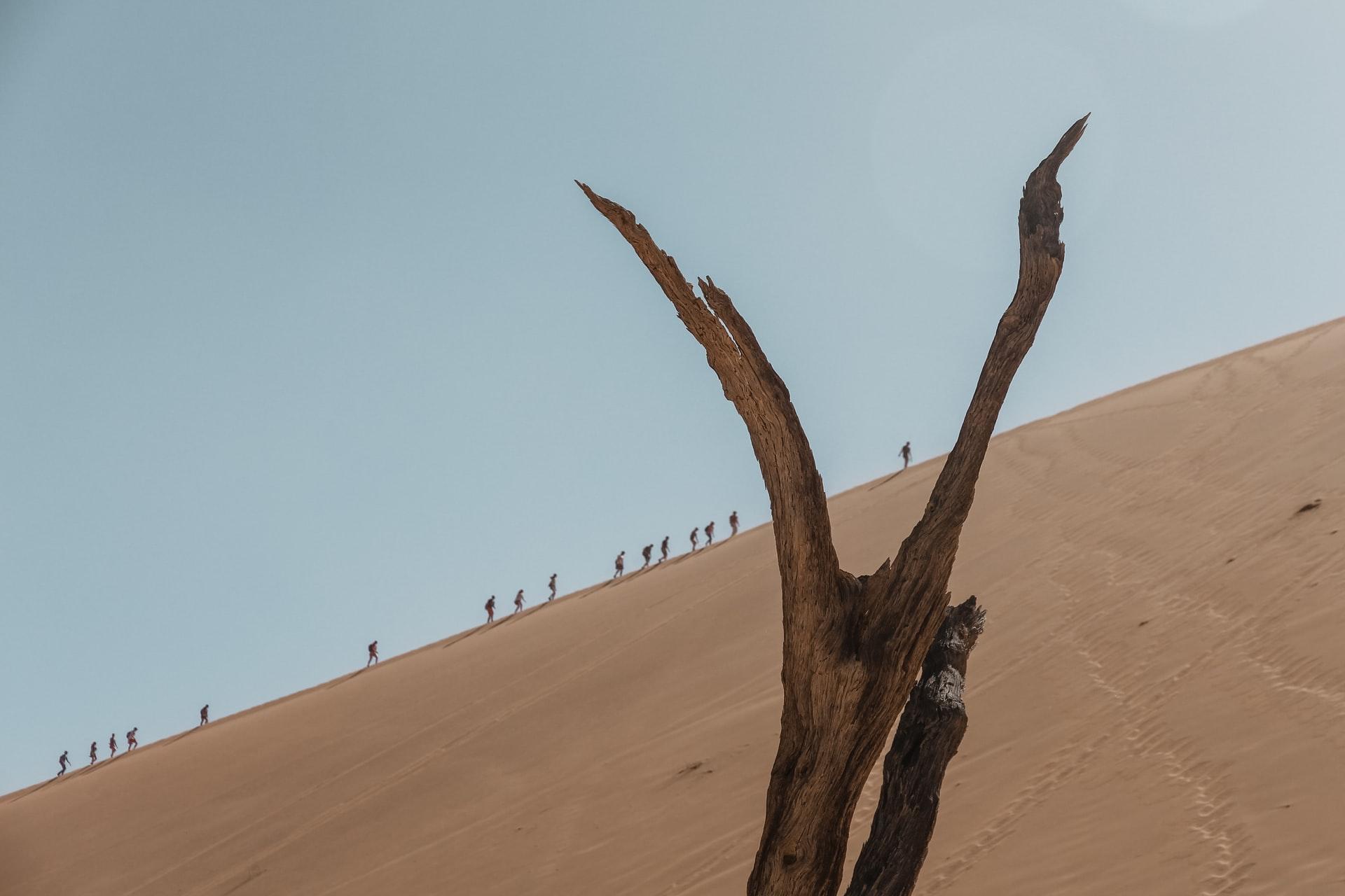 luoghi della serie the walking dead
